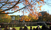 Remembrance Day York 2013